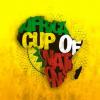 RADYO   Efektifpas 12.01.2015 – Afrika Uluslar Kupası